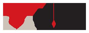 ViJon logo